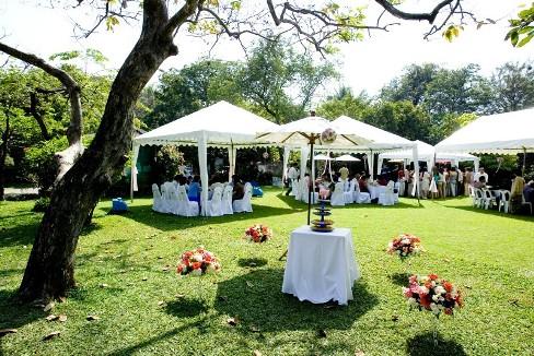 Свадьба на загородной лужайке