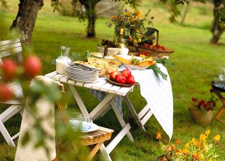 Как выбрать посуду для отдыха на природе