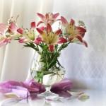 Как правильно определить свежесть цветов? 5 ценных советов