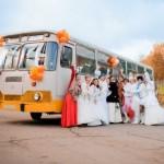 Автобус на свадьбу для гостей. Советы и правила выбора