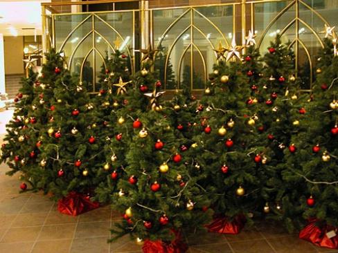 Правила выбора новогодней искусственной елки. Советы и рекомендации