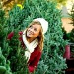 Выбираем новогоднюю елку