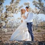 Оформление свадьбы весной