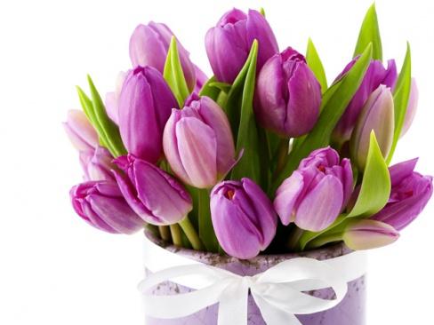 цветы для сестры картинки