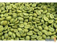 5 советов о зеленом кофе